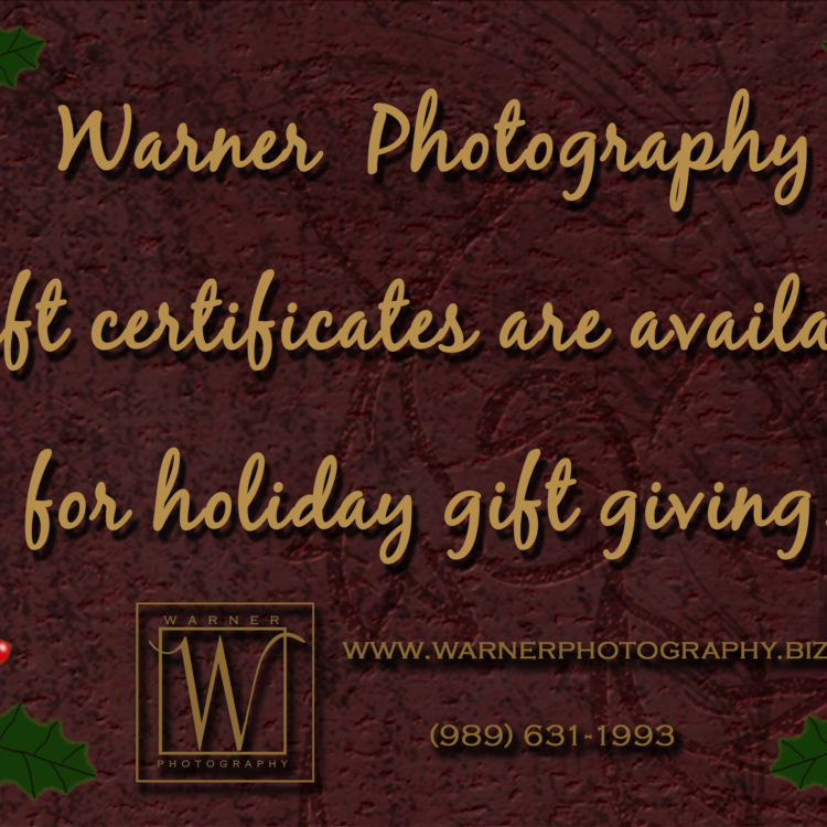giftcertificate-Warner-photography-midland-michigan